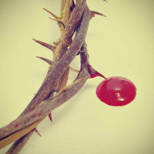 crown of thorns and drop of blood