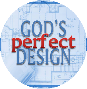 What Is Gods Design For You?