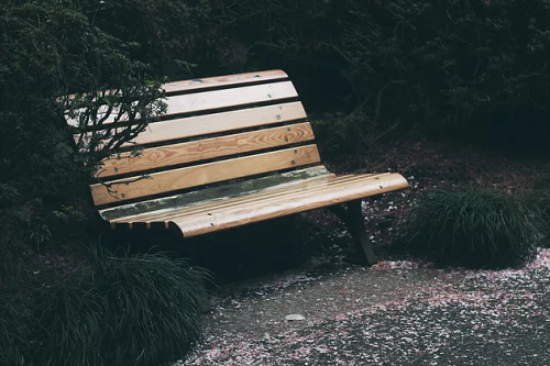 park-bench-png.png